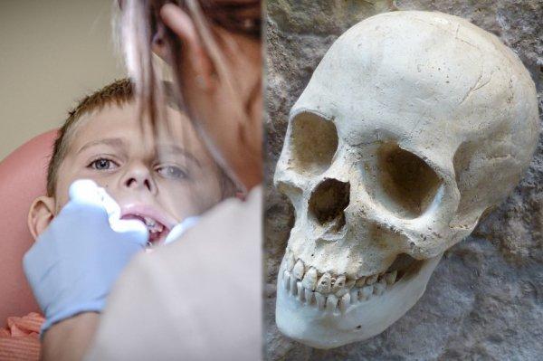 Заговор стоматологов? Зубы пещерных людей без зубной пасты выглядели лучше