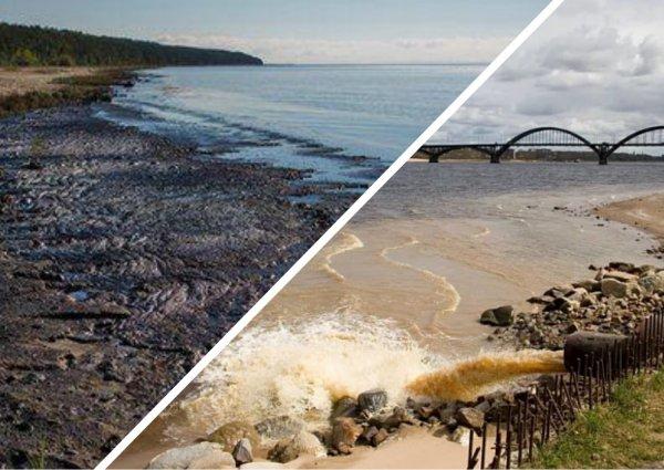 «Лучше бы заводы приглушили»: Час Земли не спасет Россию от экологической катастрофы на Байкале и Волге
