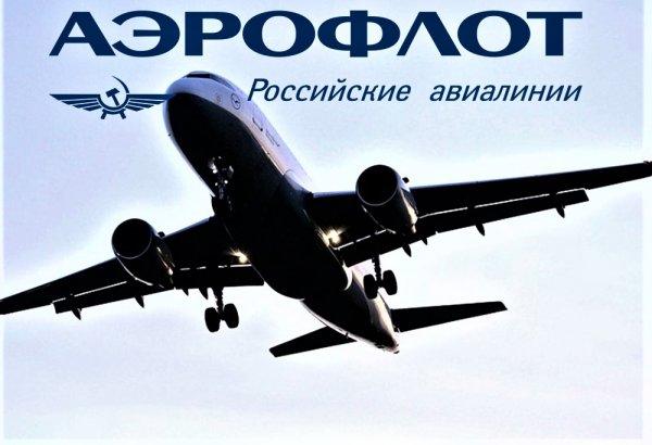Пассажир «Аэрофлота» обвиняет компанию в безнаказанной порче багажа
