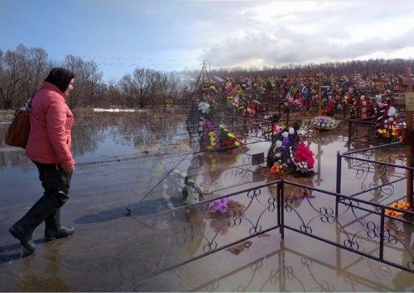 Гробы в воде, кресты упали: На кладбище в Ярославле затопило могилы после паводка