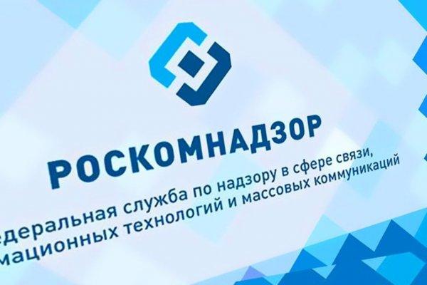 ВВП — не гей: Роскомнадзор назвал «профилактикой» борьбу с публикацией про Путина