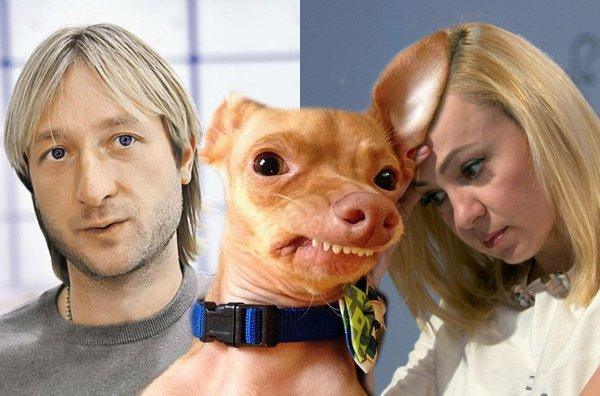 В Сети назвали причину, почему Плющенко спит с собакой без Рудковской