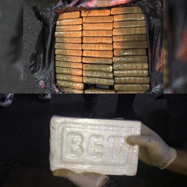 Рыбные консервы из Эквадора - в Петербурге изъято 400 кг кокаина на 4,5 млрд рублей