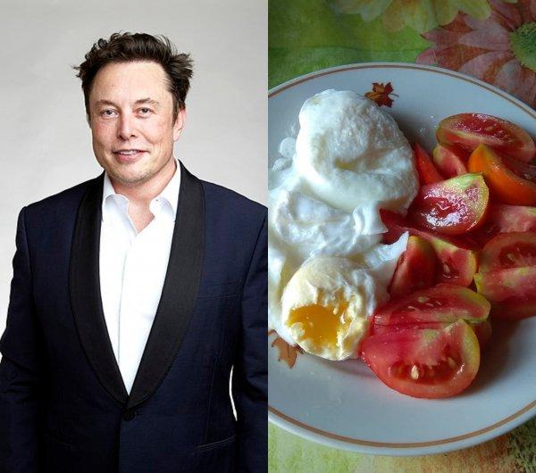 Рецепт гения: Диета Илона Маска сделает умным даже глупца