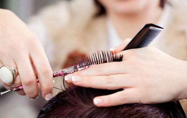 С больной головы на здоровую: Врачи рассказали об опасности стригущего лишая в парикмахерских