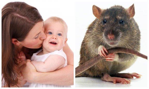 Врачи объяснили, почему иногда дети рождаются с хвостами