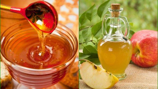 Укус и мёд – проблема уйдёт: врачи рассказали о пользе уксусно-медового напитка