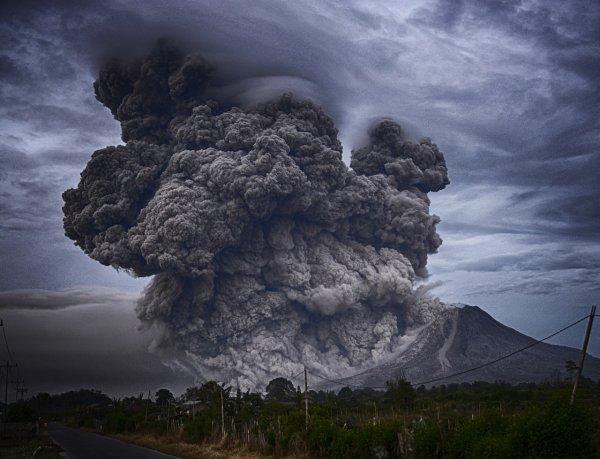 Человечество на грани вымирания? Учёные дали прогноз о выбросах углерода