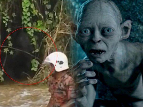 «Моя прелесть»: Древний Голлум вышел из леса и напал на автобус