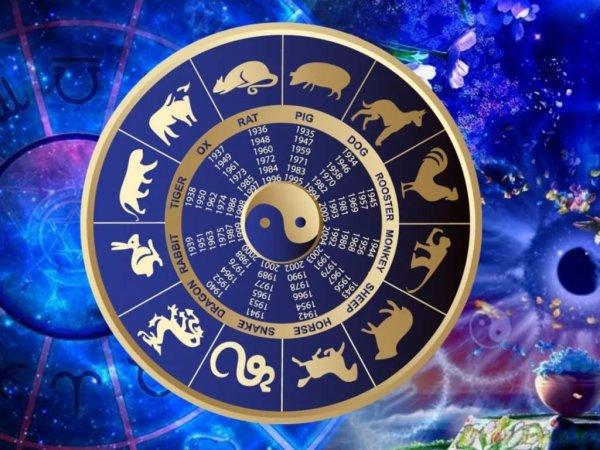 Везунчик по жизни. В год кого рождаются самые успешные люди, рассказал китайский астролог