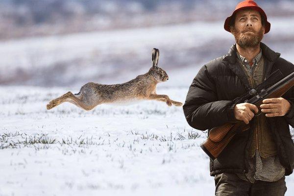 «Думай как заяц…» Секретами успешной охоты на зайца в ноябре поделился егерь