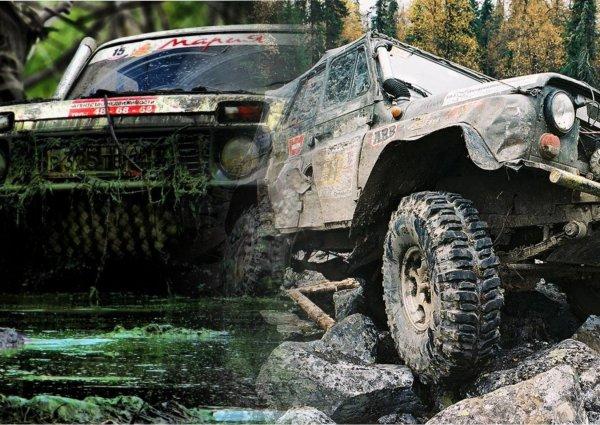 Toyota Land Cruiser отдыхает на российском бездорожье: УАЗ и «Нива» признаны лучшими внедорожниками России