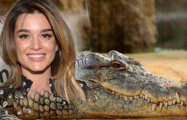 Не жена, а крокодил! Супруг Бородиной втоптал ведущую в грязь нелепым сравнением