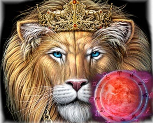 Козырная карта Льва: Что ждать Зодиаку 17 февраля