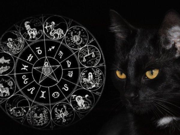 Суеверия - не шутки! Этим трём Зодиакам нельзя «играть с судьбой»